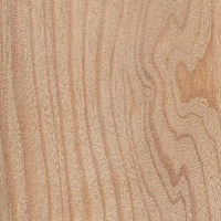 Siberian Larch Softwood Clears Grain