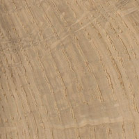 European Oak Hardwood Grain